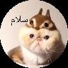 گربه گوگولی