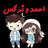 احمد و نرگس